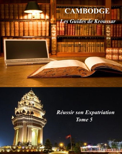 Tome 5 reussir son expatriation